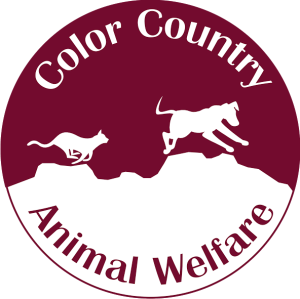 Color Country Logo 1